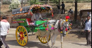 تانگےکی سواری بھی قصہ پریاں بن گئی